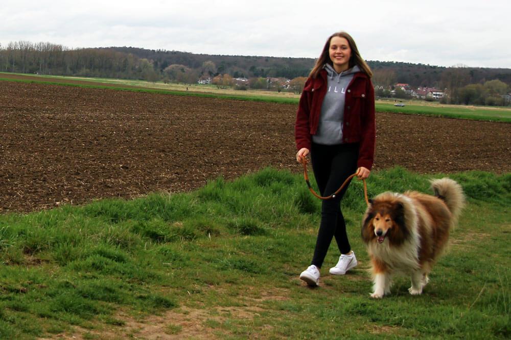 Hundesitter gehört zu beliebten Schülerjobs, Ferienjobs für Schüler